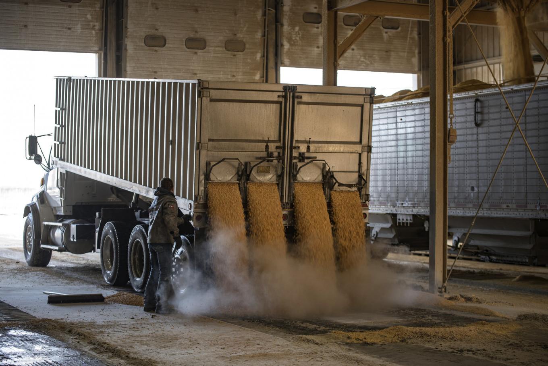 China's ethanol love may be antidote for slumping farm economy