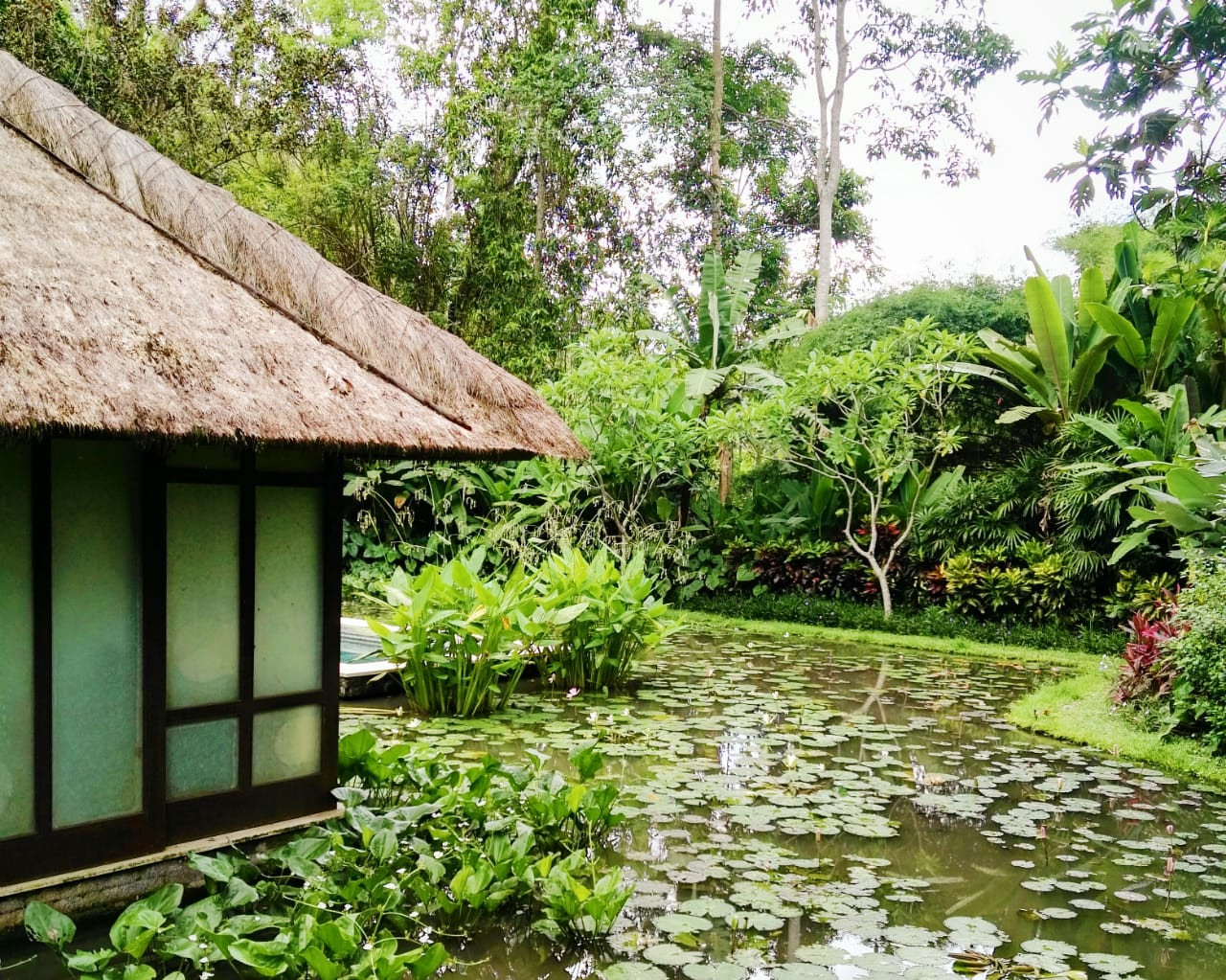 A spa treatment room located by a lotus pond at Four Seasons Bali in Sayan.