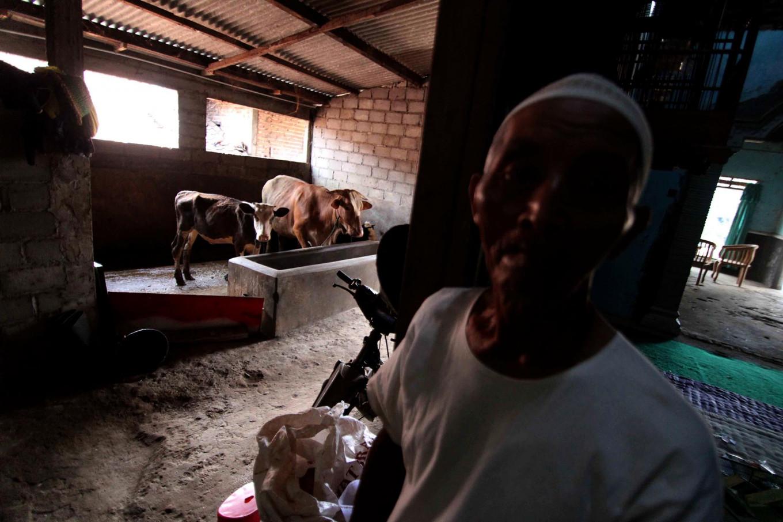 Karsiman shows off his cattle whose dung is produce biogas. JP/Maksum Nur Fauzan