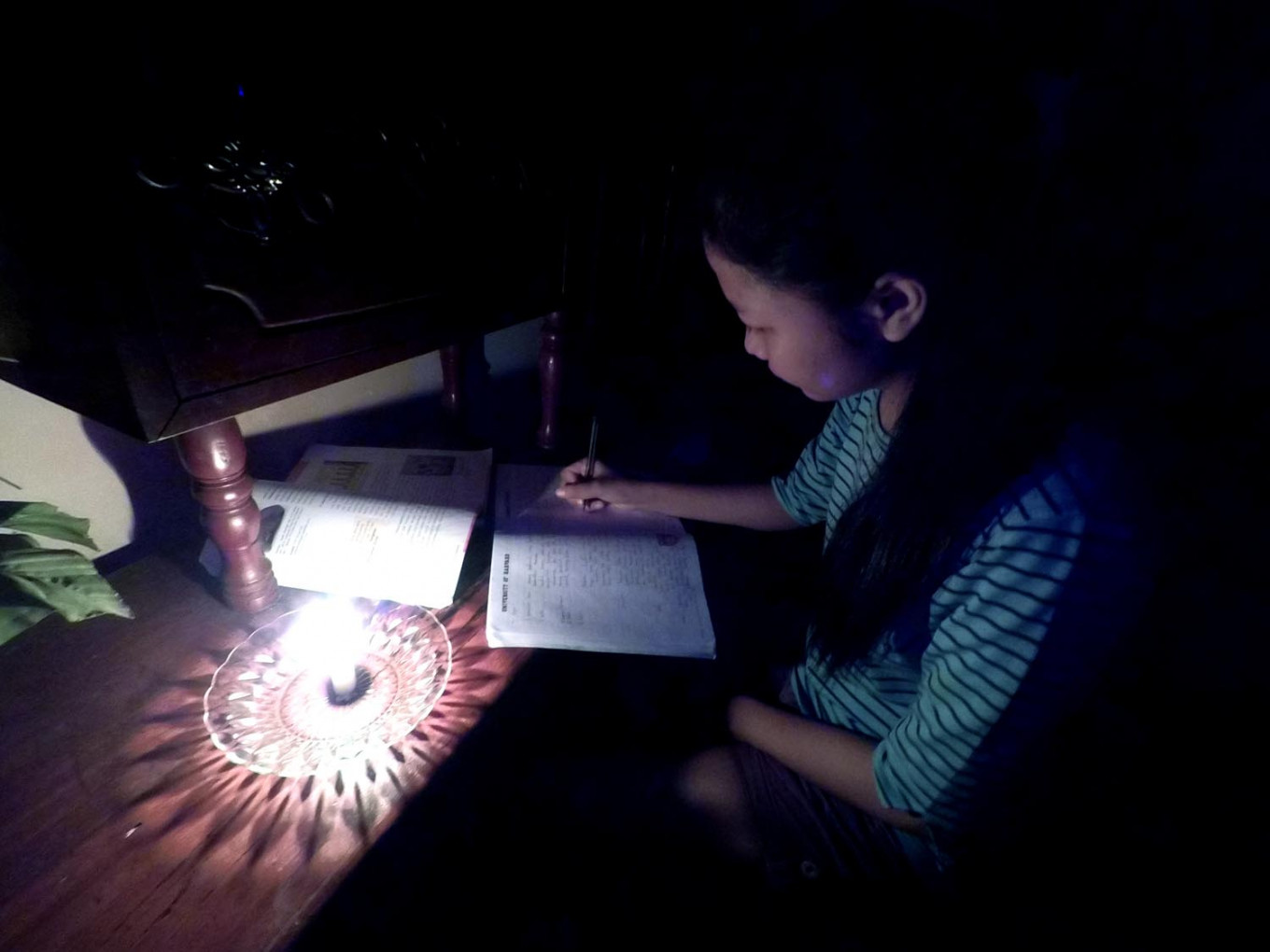Energy ministry asks PLN customer to be 'grateful' for 10-hour power outage