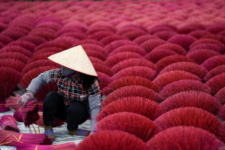 Vietnam S Incense Village Blazes Pink Ahead Of Lunar New Year