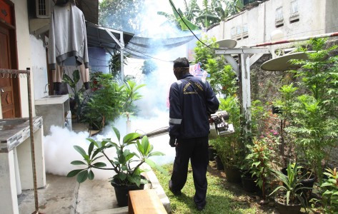 Fogging ineffective in eradicating mosquitoes, says Depok mayor