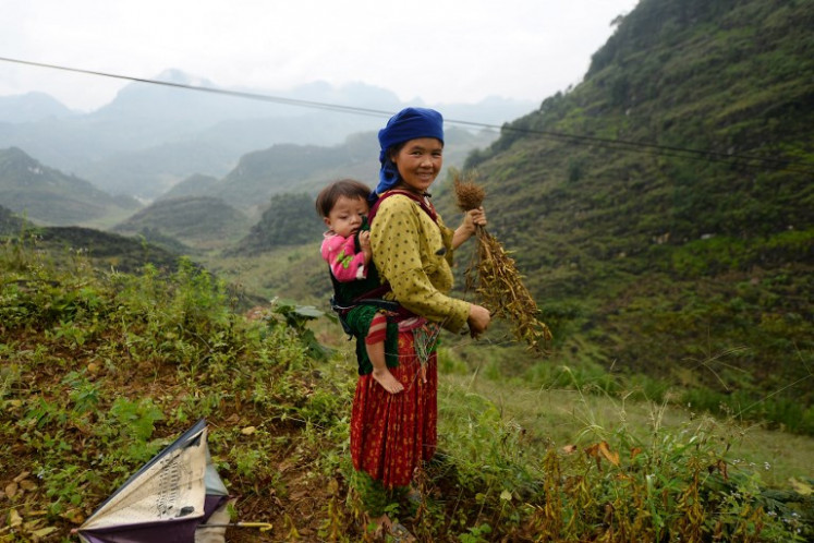 This picture taken on October 29, 2018 shows a Hmong woman carrying her child on her back while harvesting soybeans on a hill in Dong Van district, northern Vietnam's Ha Giang province. The Hmong ethnic group have been largely excluded from Vietnam's glittering economic growth of the past decade, with more than 60 percent of the country's one million minority population living under the poverty line.