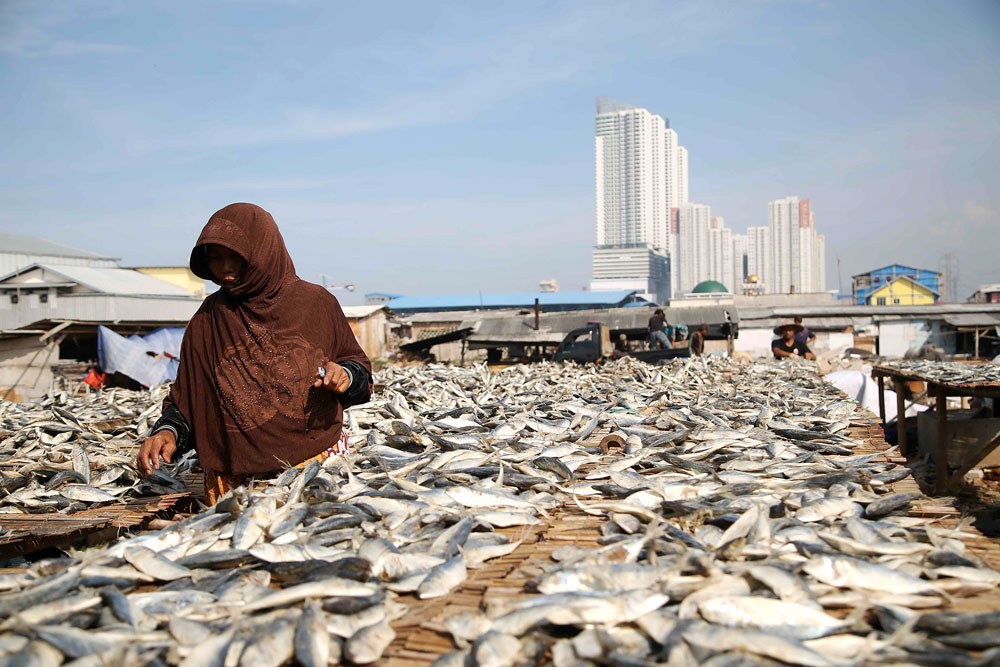 Sustainable investment in fisheries