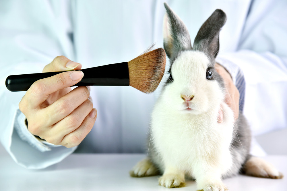 Is animal testing finally going out of fashion in beauty industry?