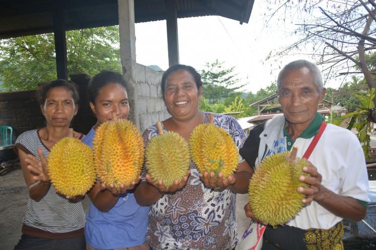 Penduduk Maupongo yang menunjukkan durian hasil kebunnya | Foto: Markus Makur / Jakarta Post
