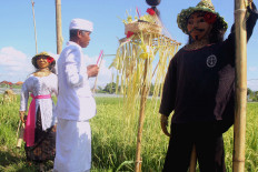 A pedanda (elder) is praying between two lelakut (scarecrows) before the Lelakut Festival in Sanur, Denpasar, Bali, on Friday (Feb. 15, 2019). The event is also to commemorate the anniversary of the city. JP/Zul Trio Anggono
