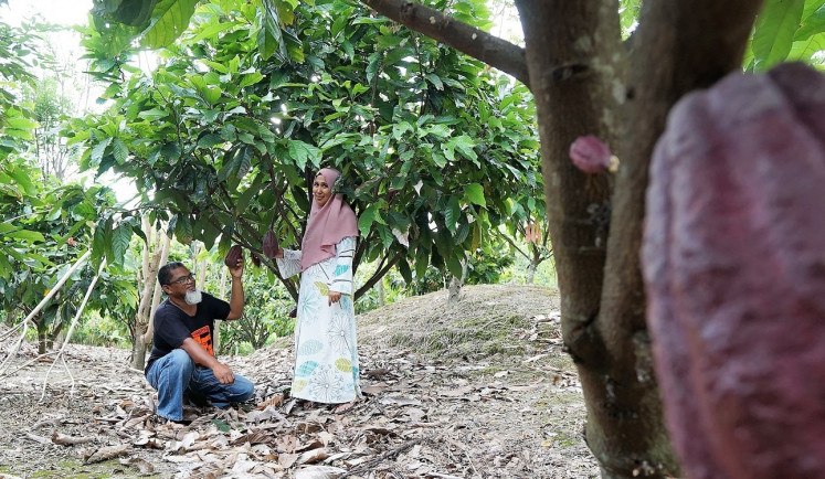 Shared vision: Rudi and his wife Erna started their cacao business in the late 1980s with a small plantation in Salulemo, North Luwu.