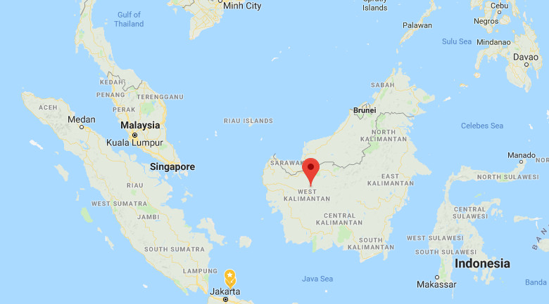 Kalimantan park security discover biota samples on detained Polish nationals