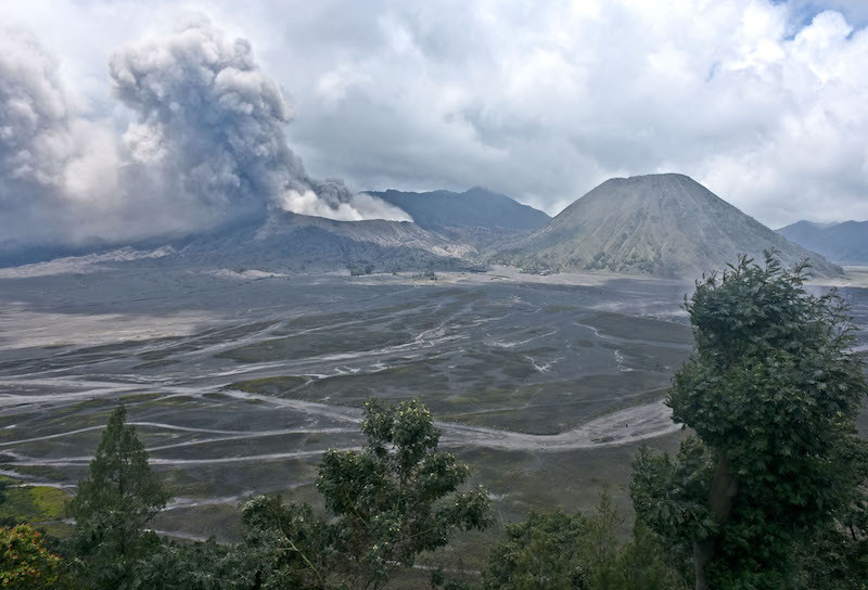Foreign tourist allegedly gets physical with Mount Bromo ranger