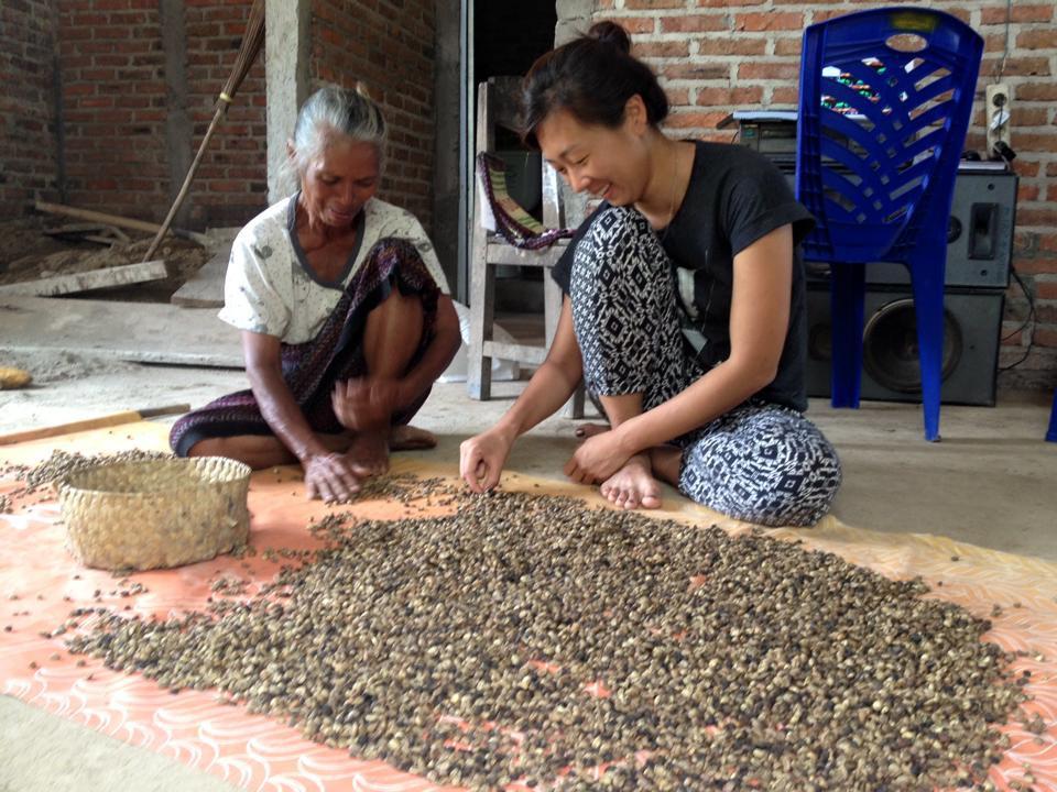 Kegiatan lainnya yang dapat diikuti oleh wisatawan di desa Detusoko, memilah biji kopi |