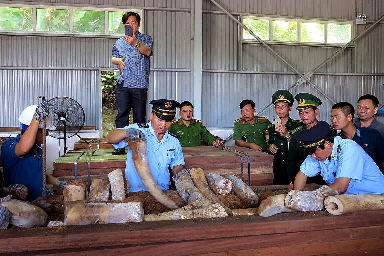 Vietnam seizes 9 tons of suspected ivory from Congo