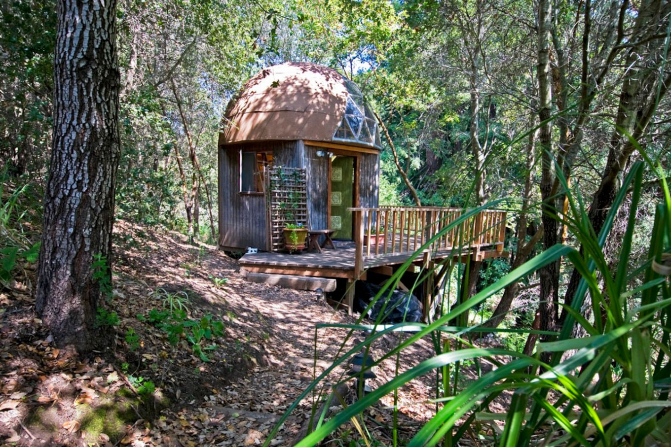 Tiny wooden cabin is world's most popular Airbnb