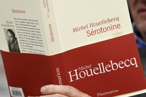 Controversial novelist Houellebecq picks up France's top honor