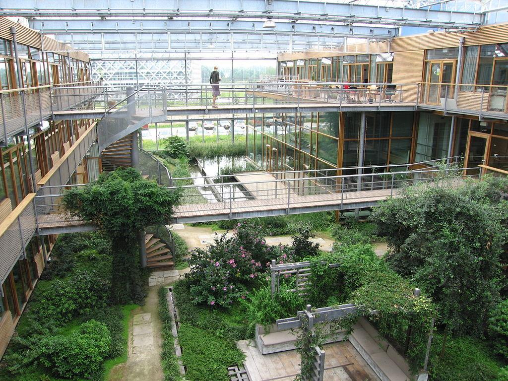 Wageningen University takes top spot in UI's greenest campus rankings