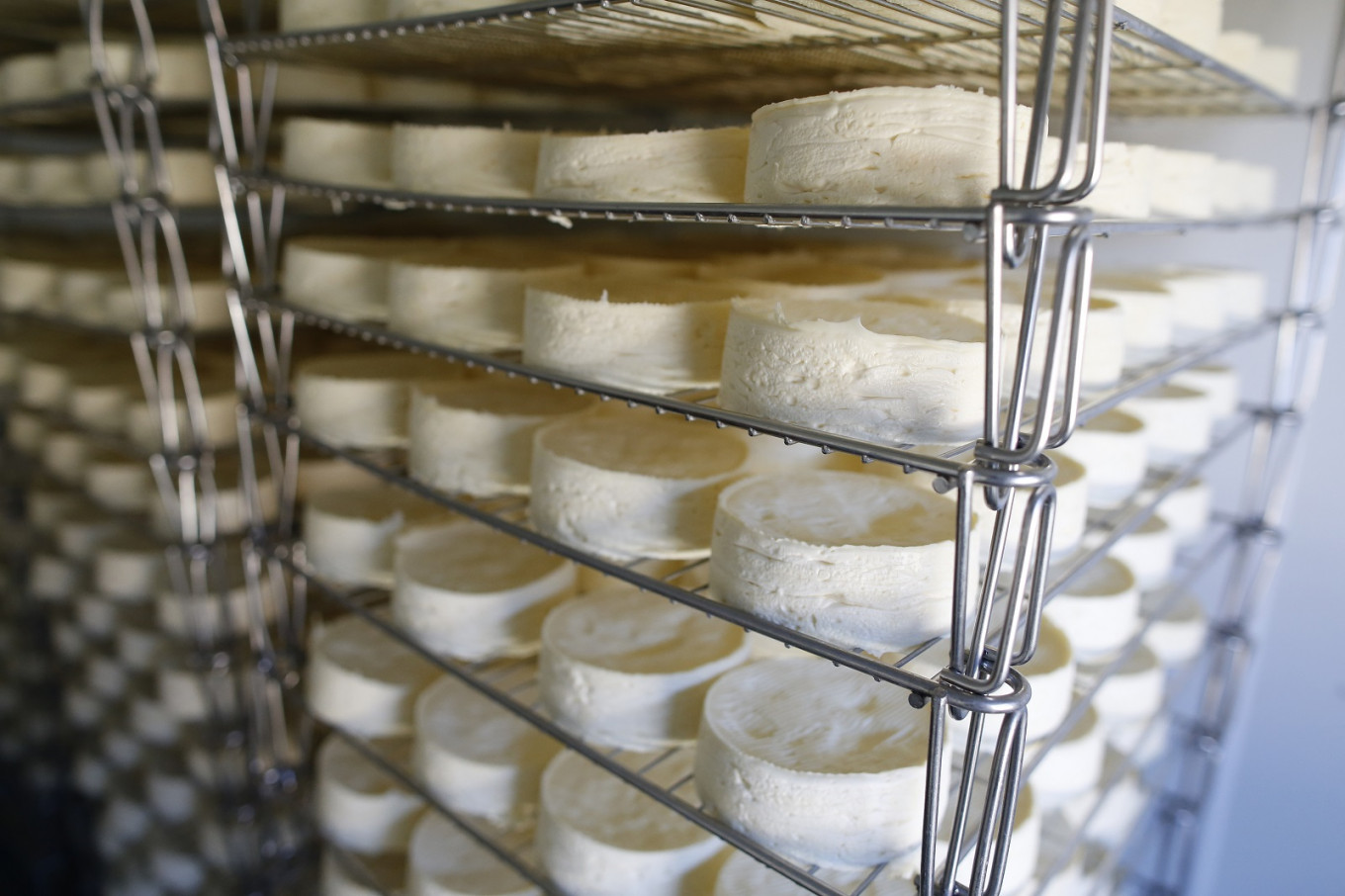 Cheese fans raise a stink over plans for pasteurized camembert