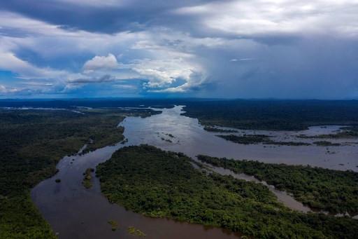 Attacks on Brazil's ecological paradises threaten biodiversity