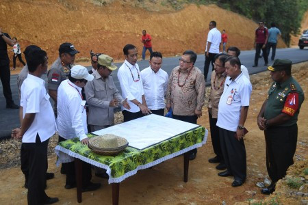 Jokowi ponders two 'hills' in Kalimantan for new capital