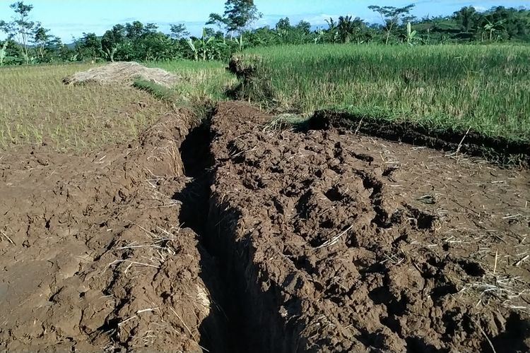 112 families leave homes as land keeps shifting in Sukabumi