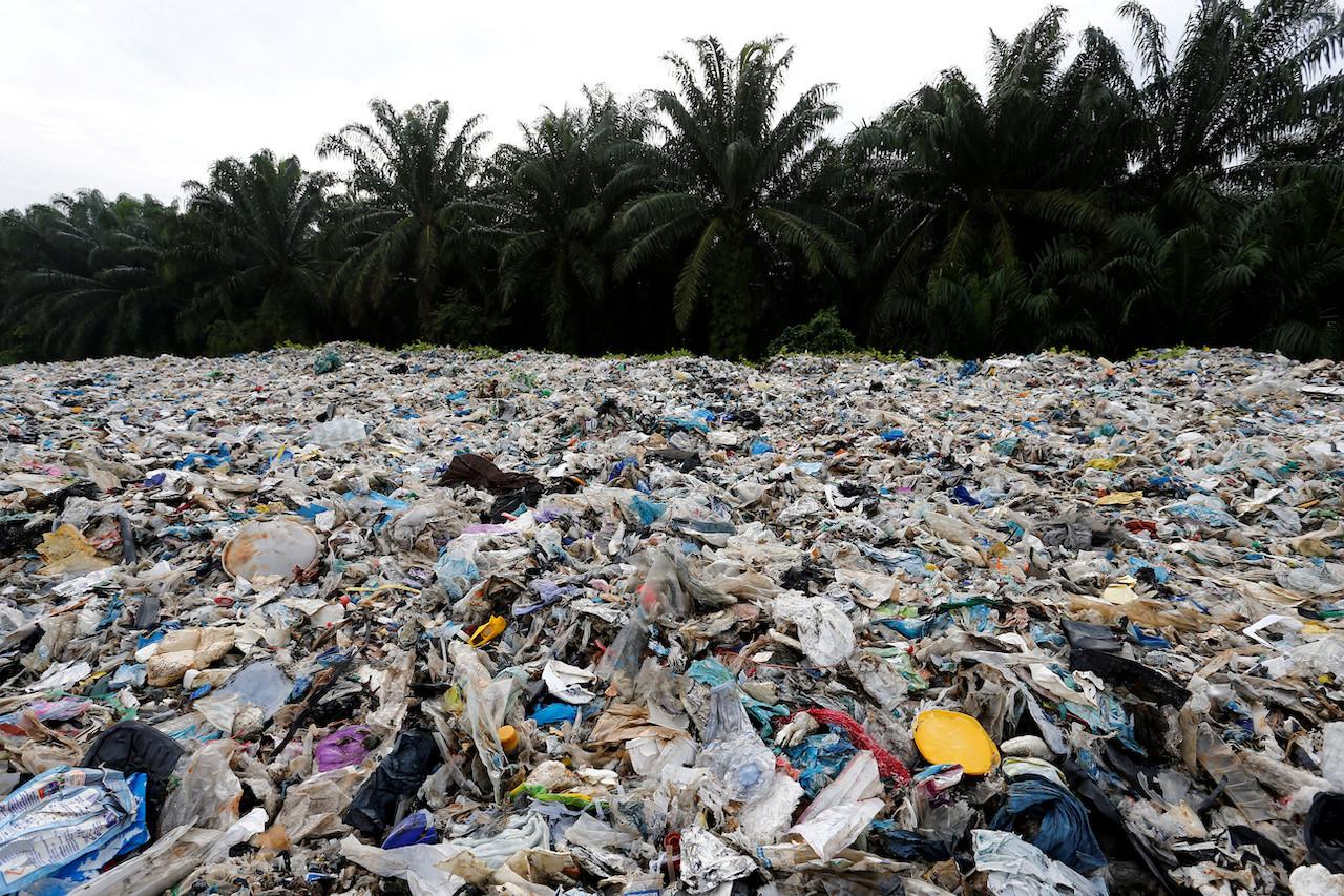 Plastic Planet Stream