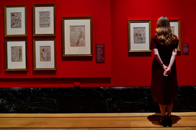 Leonardo da Vinci drawings go on display at Buckingham Palace