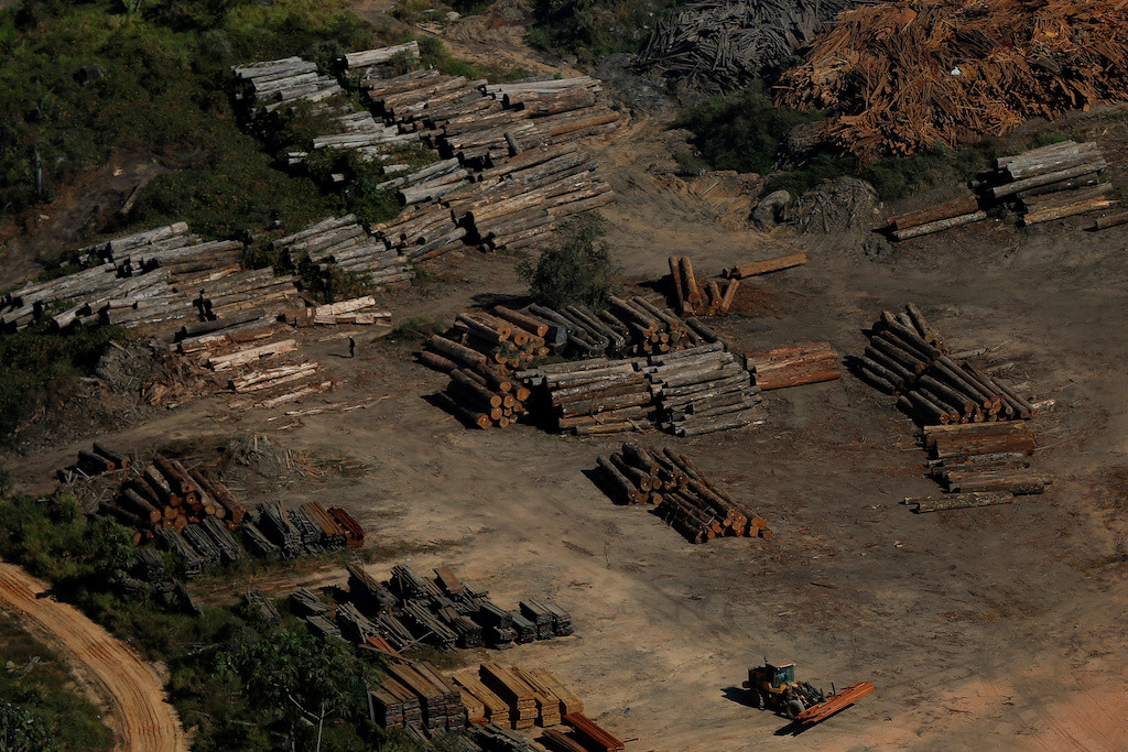 Satellite data shows Amazon deforestation rising under Brazil's Bolsonaro