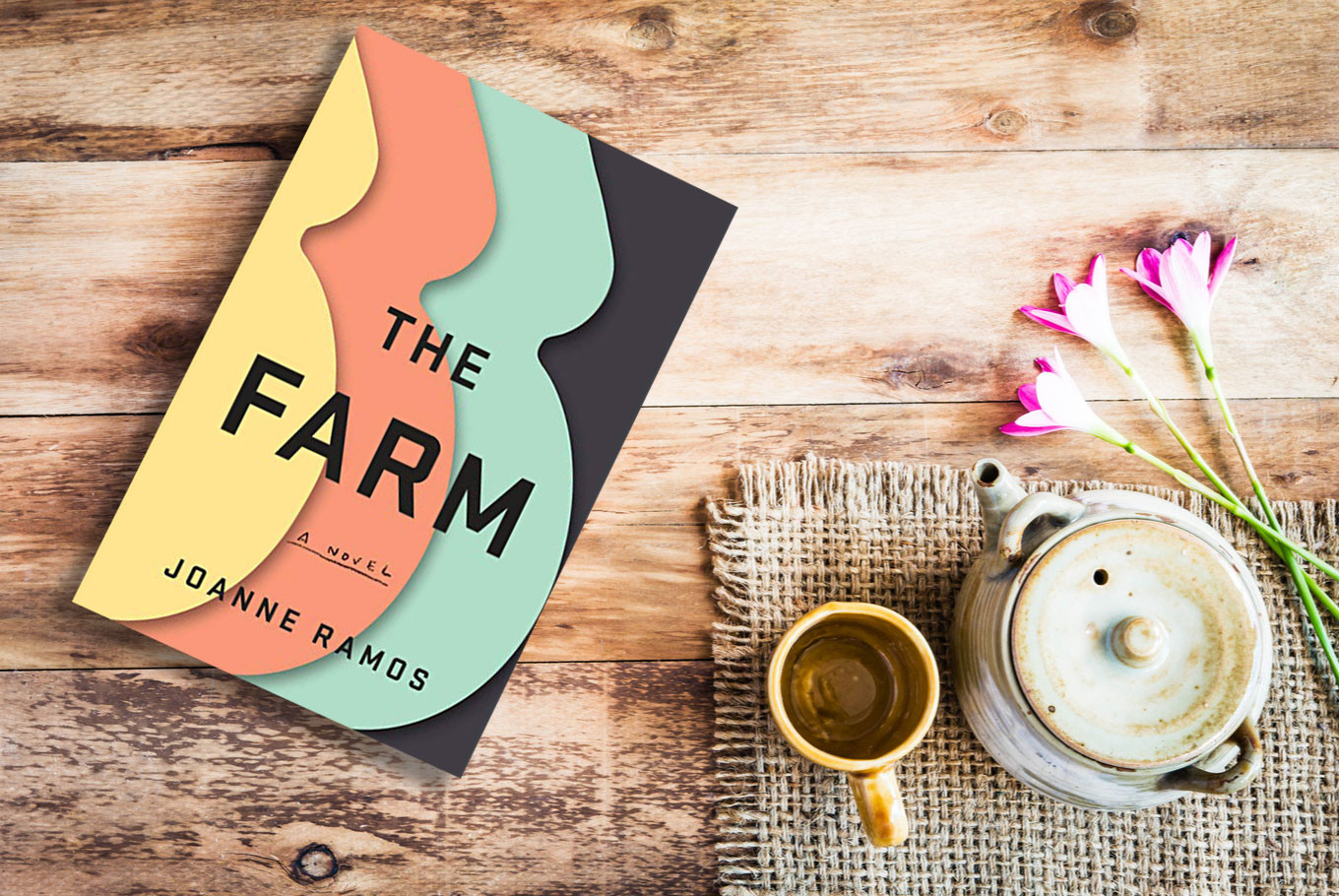 'The Farm' raises questions about surrogacy, commodification of women