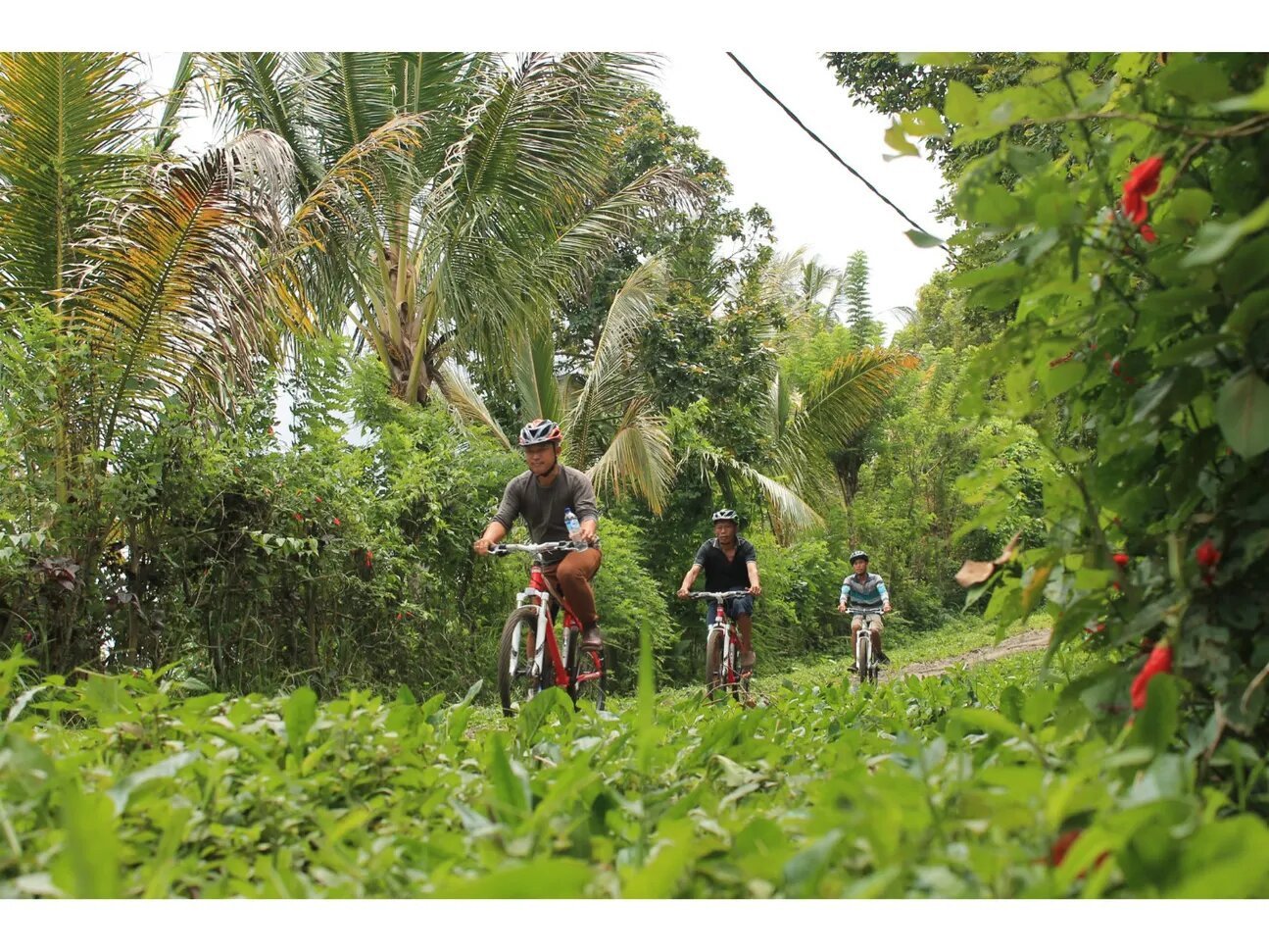 Experience authentic Bali with these four activities: Klook