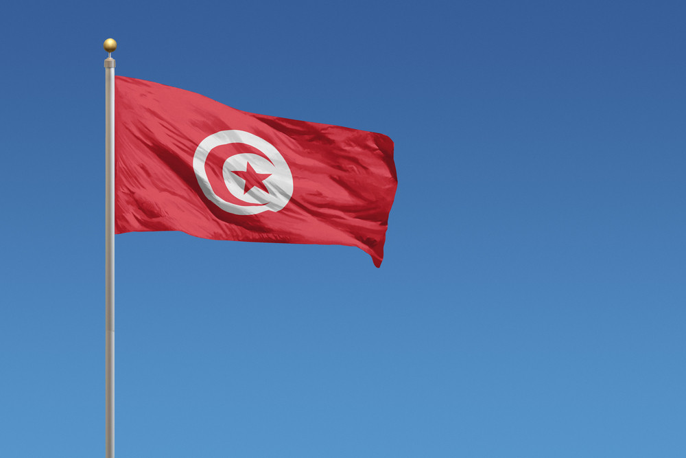 'Everything is stolen from us': Tunisians fight to preserve cultural heritage