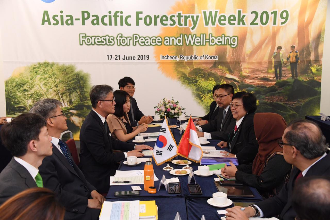 K-Pop stars to help Indonesia save our forests: Minister