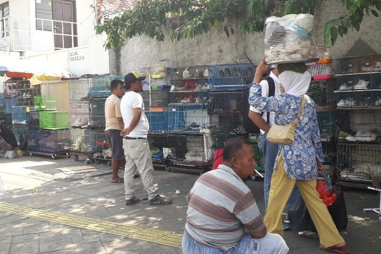 Jatinegara sidewalk to be cleared of pet sellers