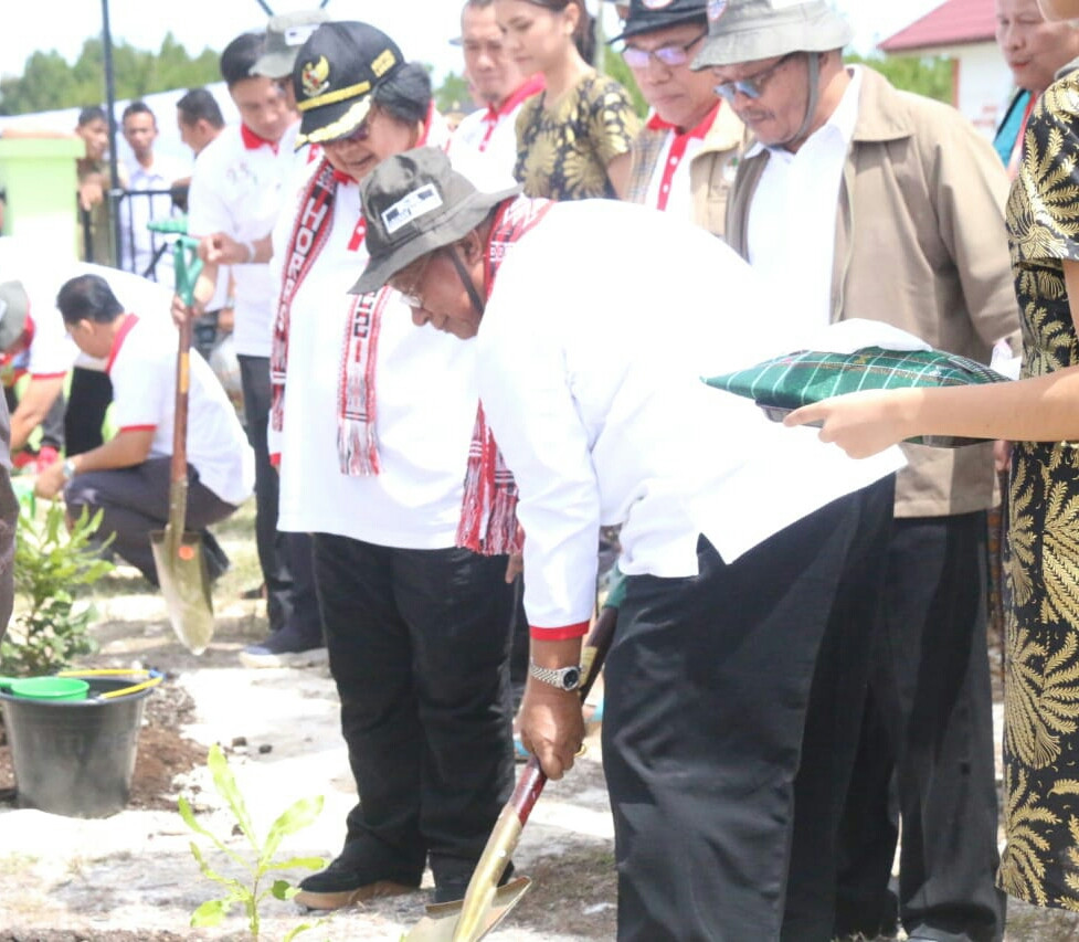 Australian macadamia to be planted at Lake Toba as part of reforestation