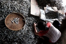 Final products: A villager packages salted fish before they are ready to be exported. JP/Donny Fernando