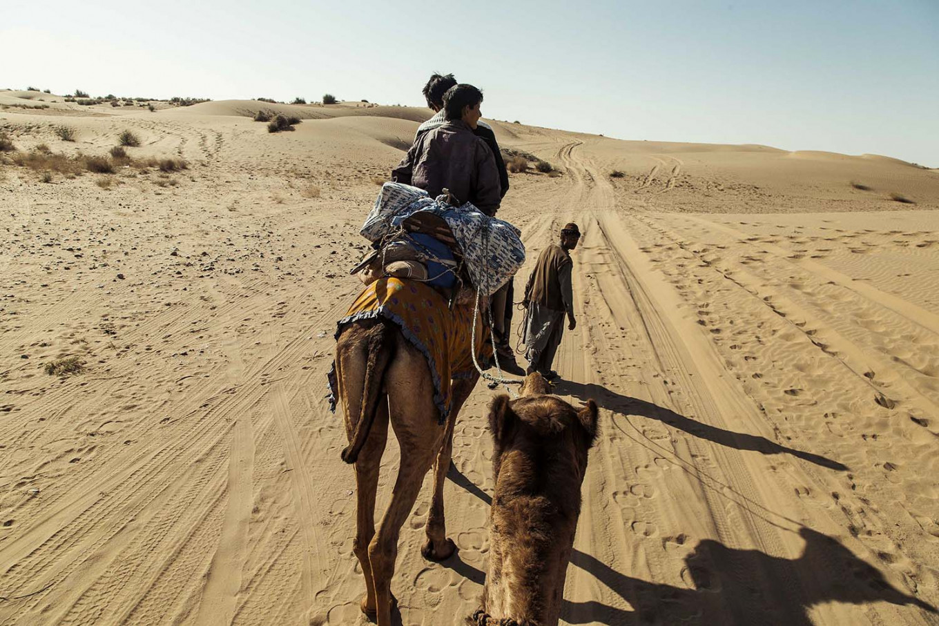 A safari tour is led through the wilderness of the Thar Desert. JP/Irene Barlian
