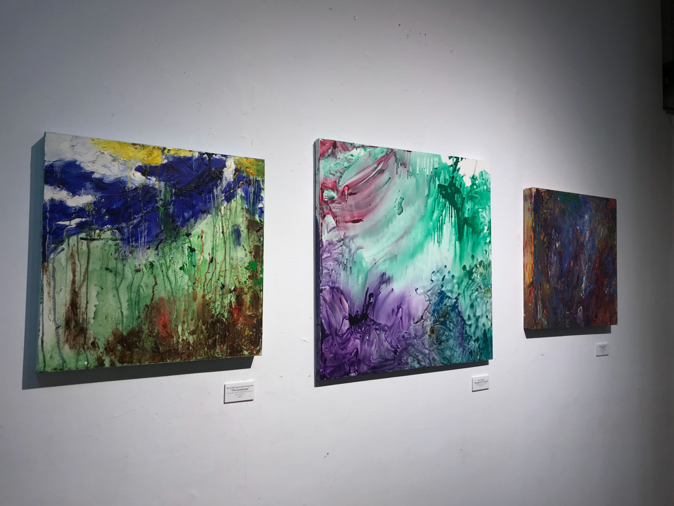 'Colors of My World' exhibition features work of painters with autism