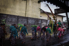 Villagers dressed in traditional attire use banana leaves as umbrellas to protect them from the rain during the parade. JP/Anggertimur Lanang Tinarbuko