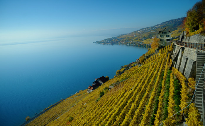 Fête des Vignerons, 'Vintage Lavaux' to celebrate Swiss wine in Vevey