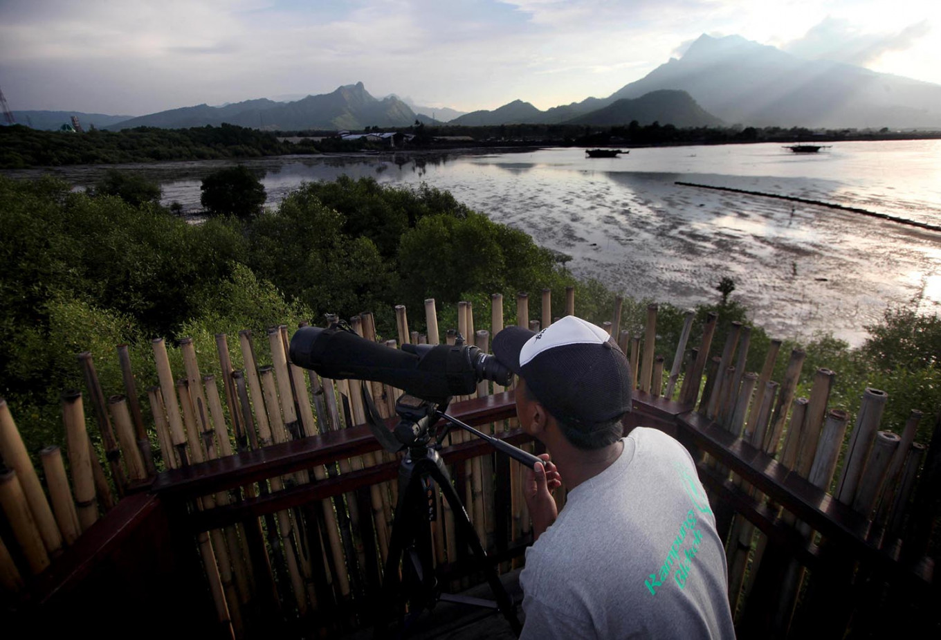 Into the wild: A visitor observes the habitat of herons against the background of Mount Putri. JP/Boy T Harjanto