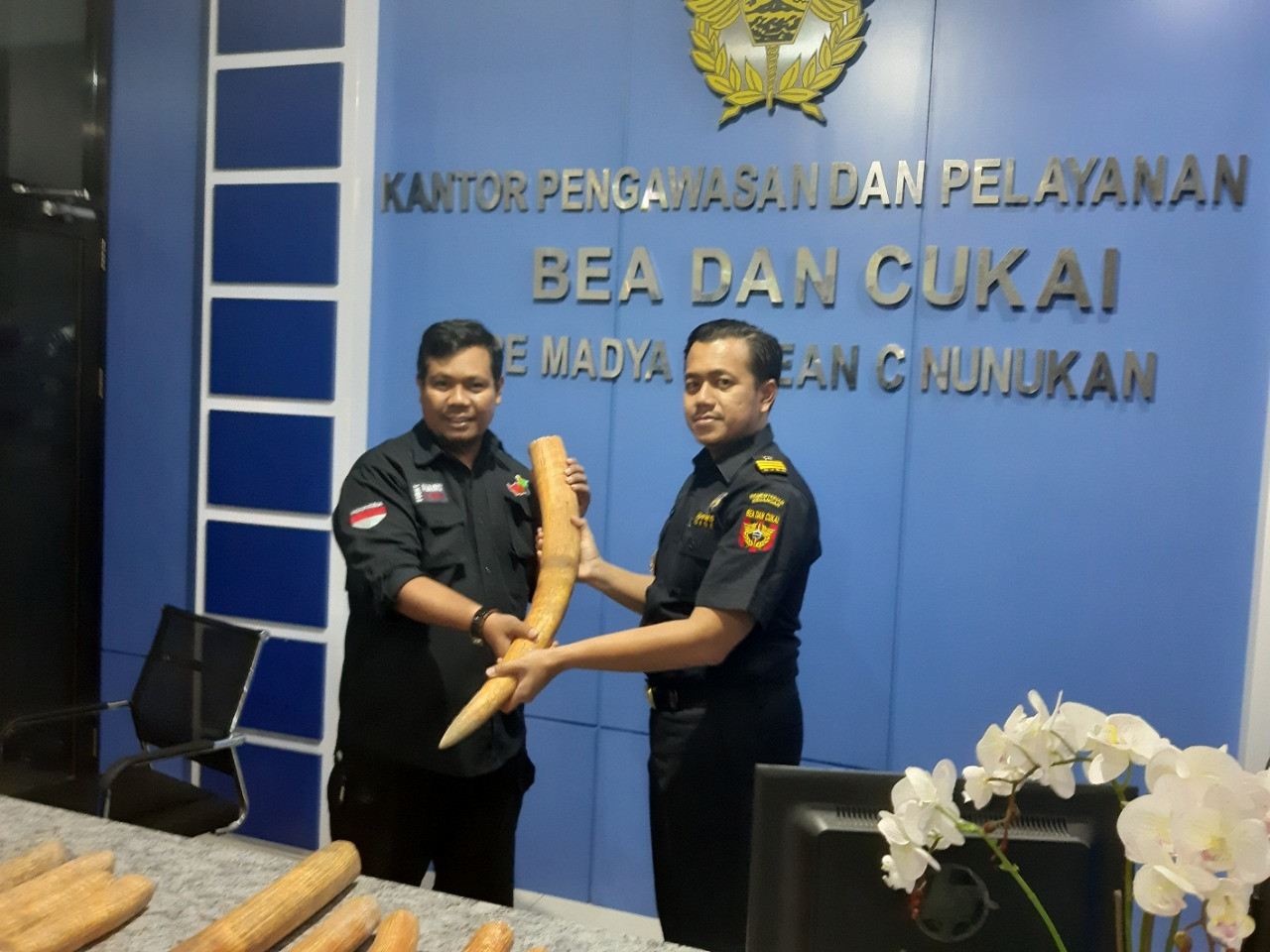 Man arrested for trying to smuggle elephant tusks from Malaysia