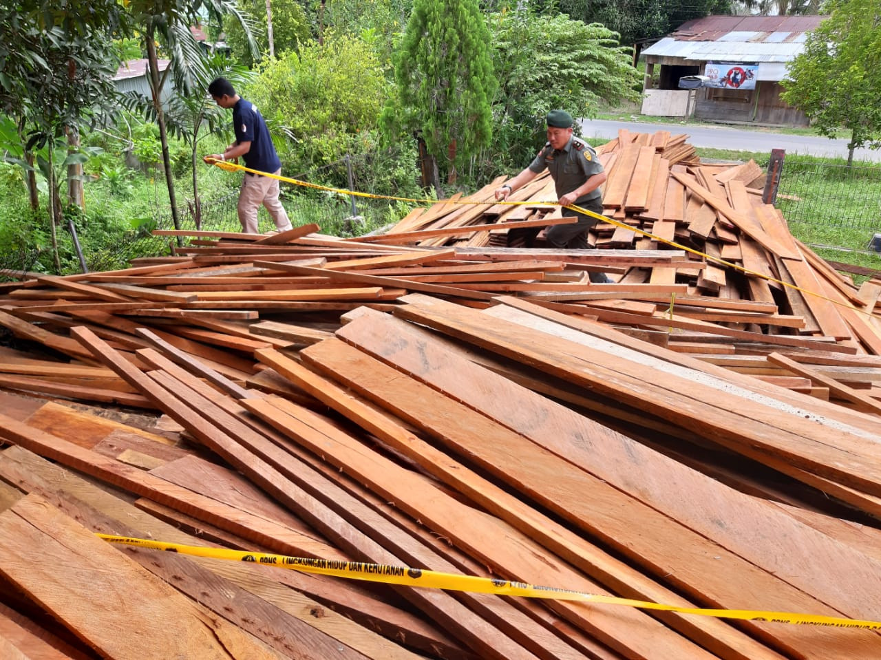 Investigators uncover illegal timber trade in North Kalimantan