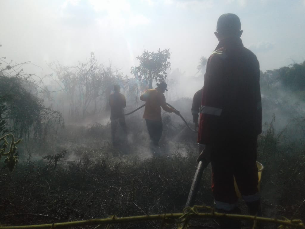 Riau Police name palm oil corporation as forest fire suspect