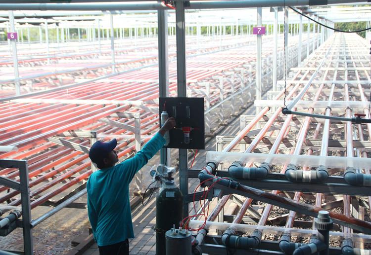 Indonesia inaugurates first microalgae-based biotech company