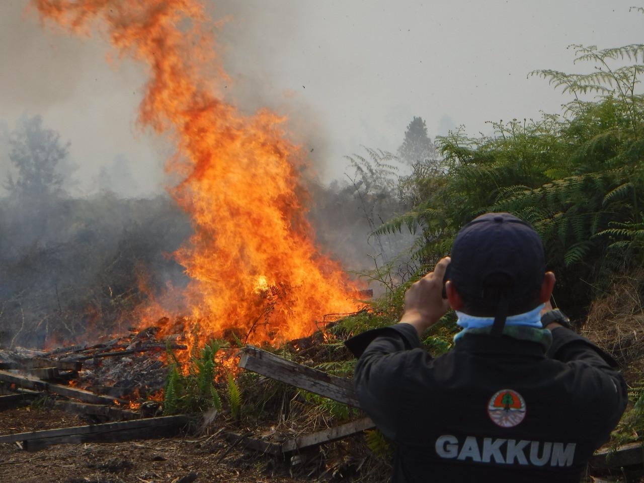 Jokowi warns on danger of hotspots as dry season hits