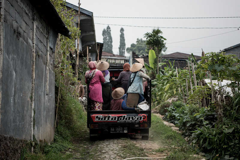 A truckload of women return home to Bowongso after a day of work in the surrounding tobacco fields.JP/Dottie Bond