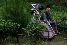 A resident is seen on a becak (pedicab) with a red and white cloth wrapped around his head. JP/Maksum Nur Fauzan