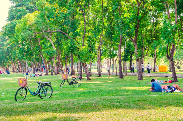 Park life boosts morale as much as Christmas, survey shows