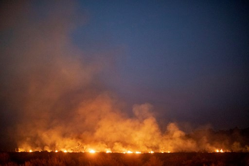 As global leaders meet, the Amazon rainforest burns