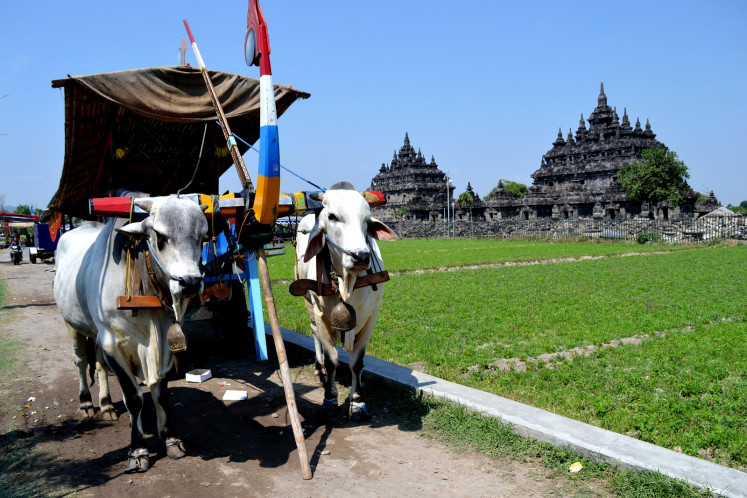 A ox-drawn wagon passes in front of Plaosan temple in Klaten.