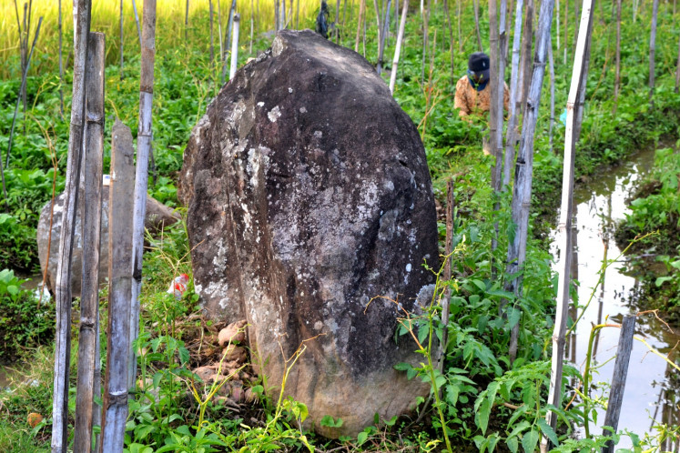 Menhir from Watu Kandang megalithic site stand among paddy fields.