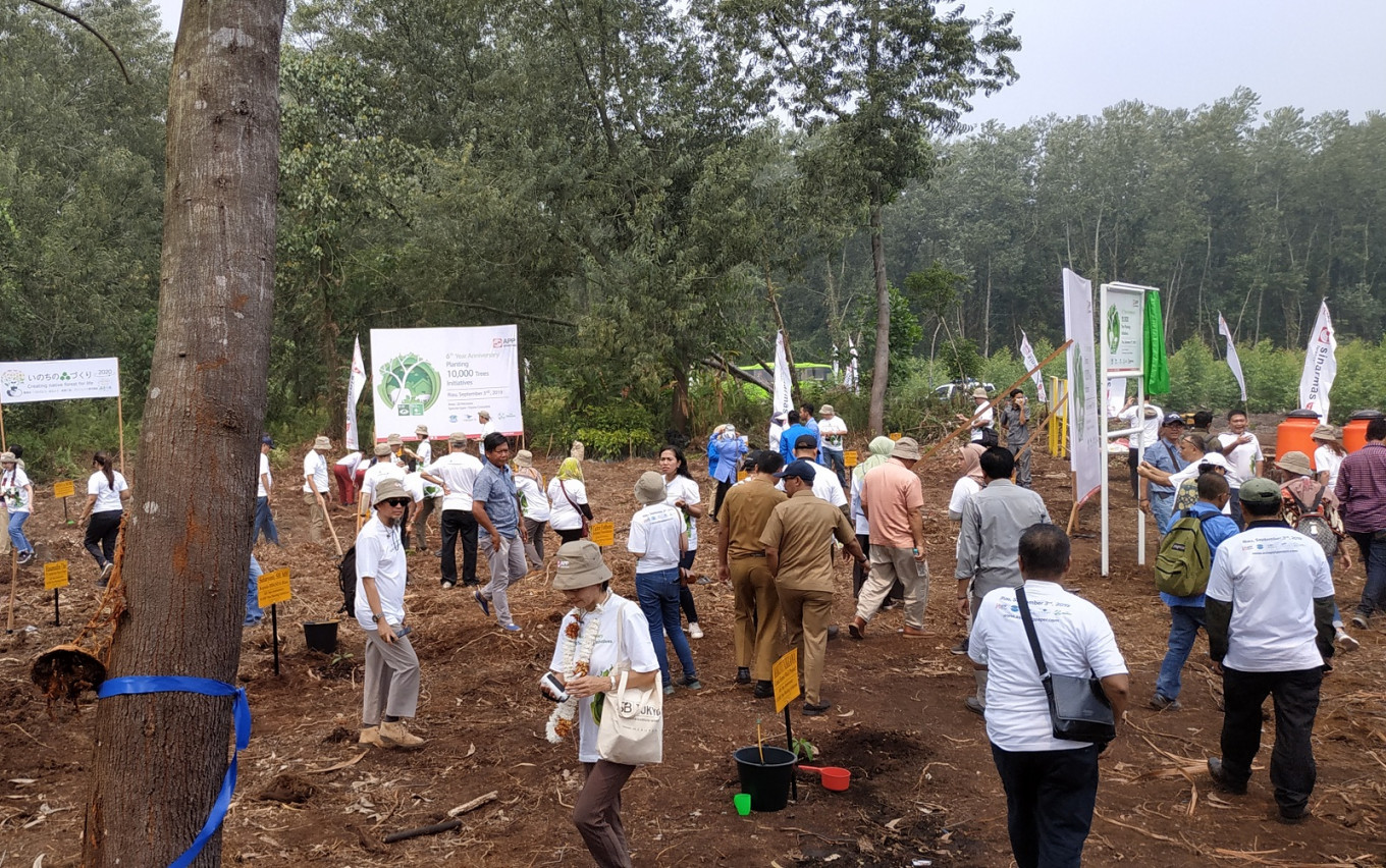 In Riau, forest restoration initiative continues with planting of 10,000 trees